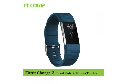 Fitbit Charge 2 Heart Rate + Fitness Wristband Large 17-20.6cm - Large Blue